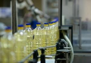 produkcja oleju palmowego 1